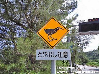 ヤンバルクイナの標識@沖縄本島