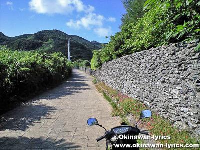 珊瑚の石垣@与路島