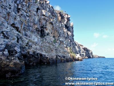 ジェノベサ島(Genovesa island)@ガラパゴス(Galapagos)