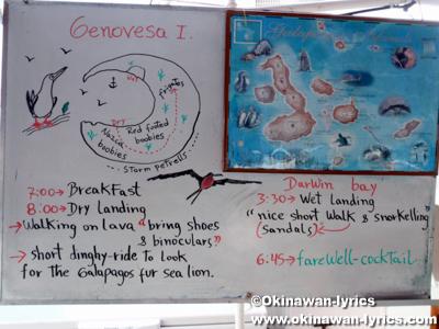 クルージング2日目のスケジュール@ジェノベサ島(Genovesa island)