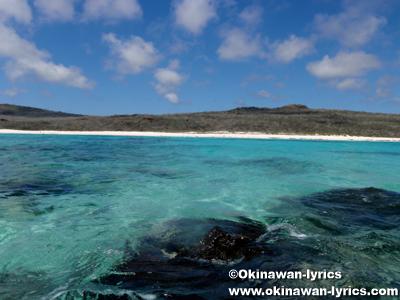 エスパニョーラ島(Española island)@ガラパゴス(Galapagos)