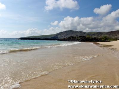 ホワイトビーチ(White Beach)@フロレアナ島(Floreana island), ガラパゴス(Galapagos)