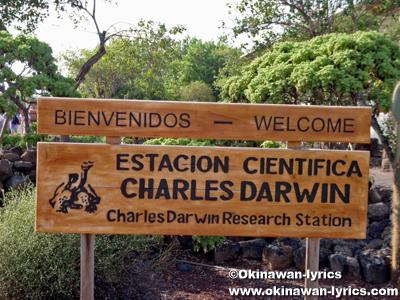チャールズダーウィン研究所(Estación Científica Charles Darwin)@サンタクルス島(Santa Cruz island), ガラパゴス(Galapagos)