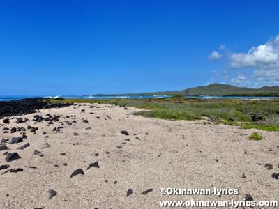 Playa del Amor@イザベラ島(Isabela island), ガラパゴス(Galapagos)