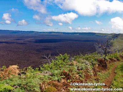 Volcán Sierra Negra@イザベラ島(Isabela island), ガラパゴス(Galapagos)