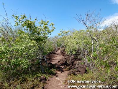 Las Tijeretasへの道@サンクリストバル島(San Cristóbal island), ガラパゴス(Galapagos)