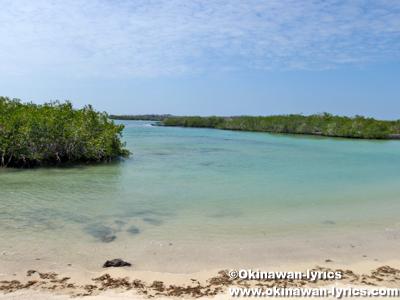Muelle Finch Bay@サンタクルス島(Santa Cruz island), ガラパゴス(Galapagos)