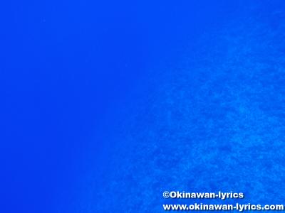 カヤンゲル島Blue Holeでシュノーケル