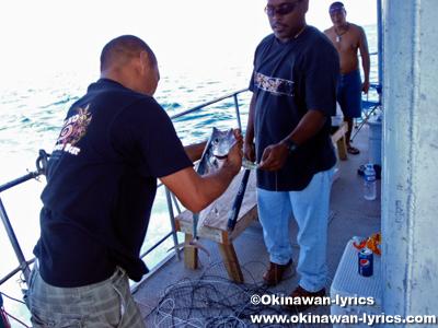 定期船でコロール島からペリリュー島へ(public boat from Malakal island to Peleliu island)