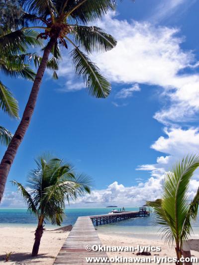 カープ島, Carp Is. in Palau