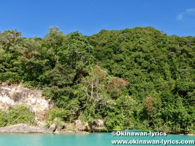 ミルキーウェイ(Milky Way)@パラオ(Palau)