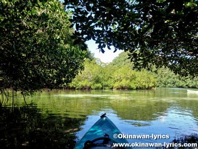 カヤック(kayaking)@ウルクタープル島(geruktabel island), パラオ(Palau)