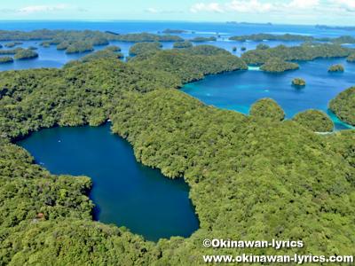 ジェリーフィッシュレイク(Jellyfish Lake), ヘリコプター遊覧(helicopter sightseeing)@パラオ(Palau)