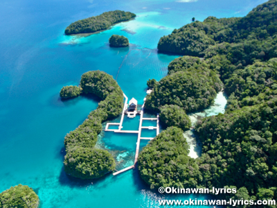 ドルフィンズ パシフィック(Dolphins pacific), ヘリコプター遊覧(helicopter sightseeing)@パラオ(Palau)