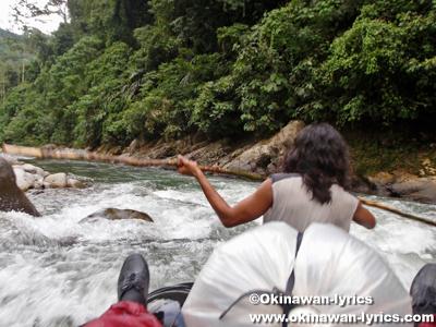 ラフティング(rafting)@グヌンレイセル国立公園(Gunung Leuser National park)
