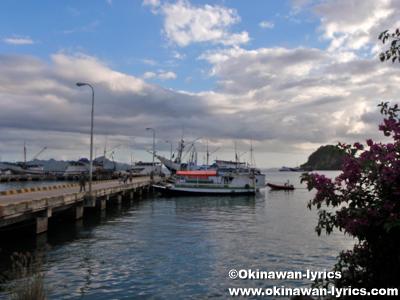 from Flores island to Kanawa island