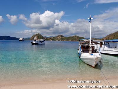 ビダダリ島(Bidadari island)