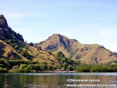 リンチャ島(Rinca island)