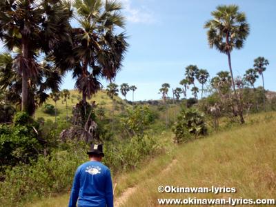 コモド国立公園(Komodo national park)@リンチャ島(Rinca island)