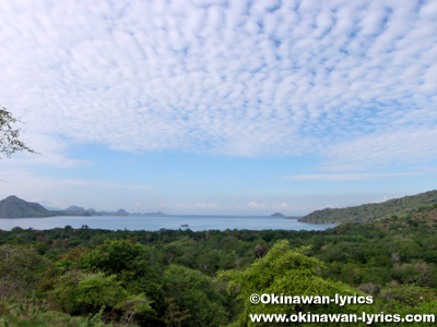 コモド島(Komodo island)@コモド国立公園(Komodo national park)