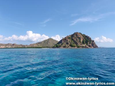 Pungu island