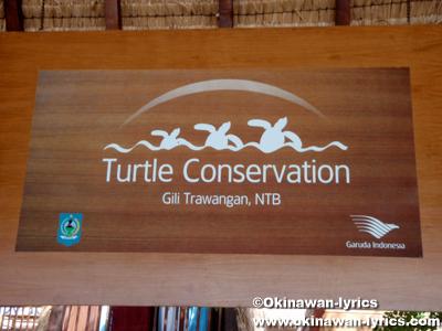 Turtle Conservation@ギリトラワンガン(Gili Trawangan)
