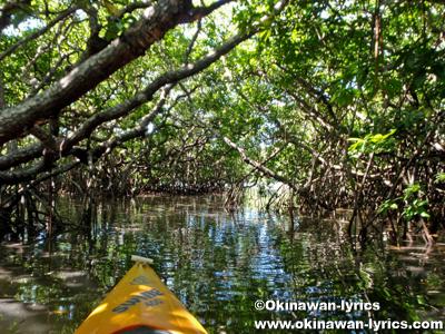 カヤック@Gagil-Tomil island