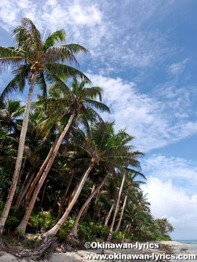 アソール島(Asor Is.)@ユリシー環礁(Ulithi Atoll)