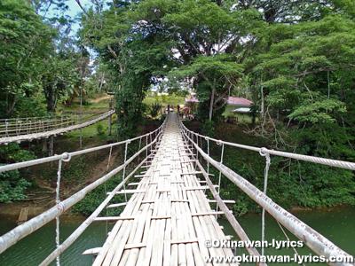 Hanging Bridge in Bohol Is.