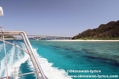慶良間諸島でホエールウォッチング