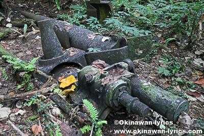 日本軍戦跡(カノン砲)@ランガル島(Lenger island)、ポンペイ(ミクロネシア連邦)
