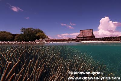 ダウレイレイ島(Dahu Reirei island)@ポンペイ(ミクロネシア連邦)