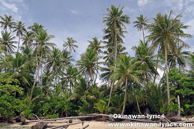 Nahkapw island@ポンペイ(ミクロネシア連邦)