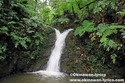カスケード滝@オマ山、コスラエ(ミクロネシア連邦)