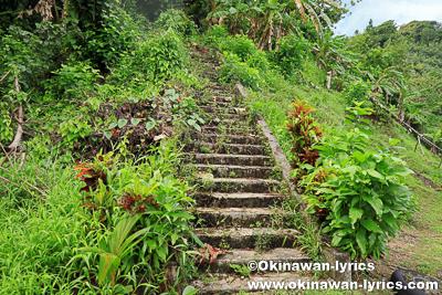 日本軍の戦跡(階段)@コスラエ(ミクロネシア連邦)