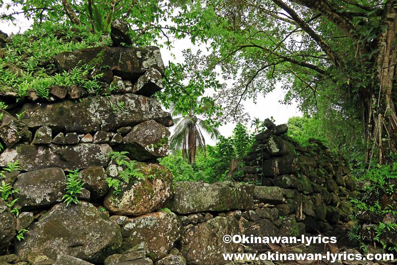 レラ遺跡と戦跡巡り@コスラエ(ミクロネシア連邦)