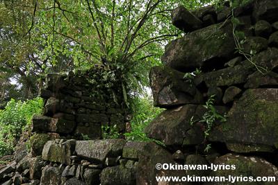 レラ遺跡(Lelu Ruins)@コスラエ(ミクロネシア連邦)