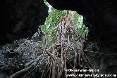 cave@モソ島(Moso island),バヌアツ