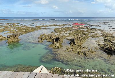 ブルーホールでシュノーケル@タンナ島(Tanna island),バヌアツ