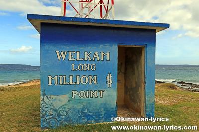 Million Dollar Point@サント島(Espiritu Santo island),バヌアツ
