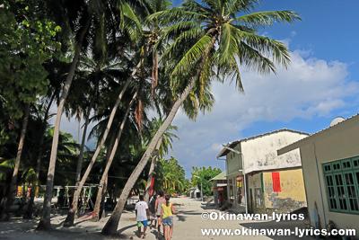 Dhonfanu island@バア環礁,モルディブ