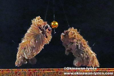 アヤチ獅子@今帰仁村の謝名区豊年祭