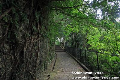 首里金城町の石畳道(島添坂, シマシービラ)
